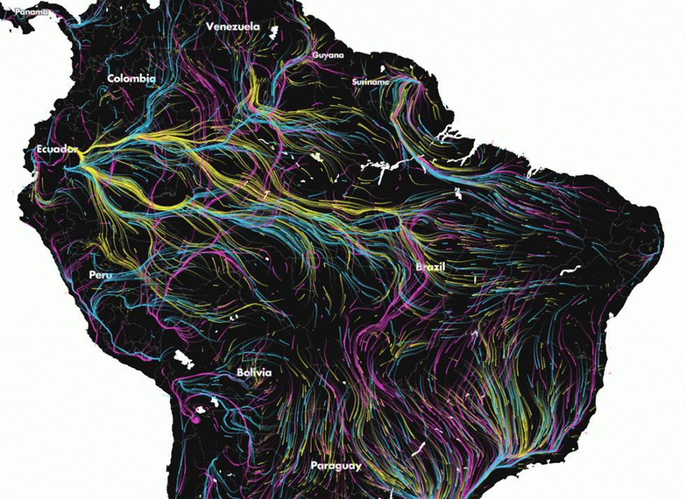 מפת נדידת המינים המשוערת בדרם אמריקה (צילום: Migration in Motion) (צילום: Migration in Motion)