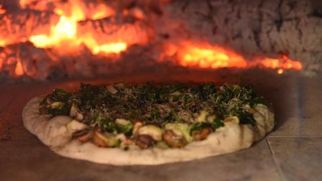 פיצה משתזפת בטאבון (צילום: אביהו שפירא) (צילום: אביהו שפירא)