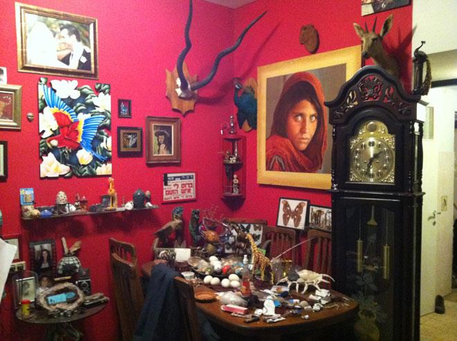 """חלק מהאוספים של אביה בבית ההורים. """"מאובנים, פוחלצים, צדפים ופרפרים היו חלק בלתי נפרד מנוף ילדותי"""" (צילום: אלבום פרטי)"""