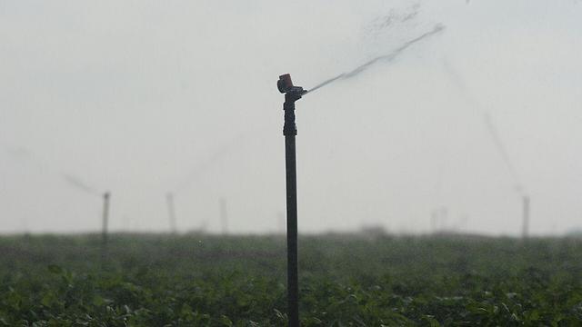 השקיה בנחל עוז (צילום: רועי עידן) (צילום: רועי עידן)