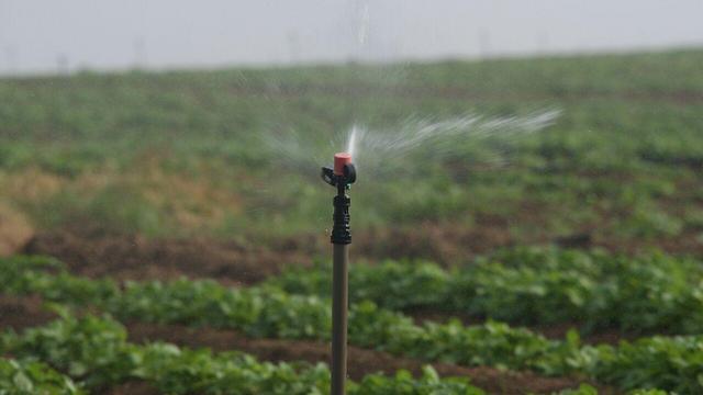 משקים שדות בקיבוץ נחל עוז שבדרום  (צילום: רועי עידן) (צילום: רועי עידן)
