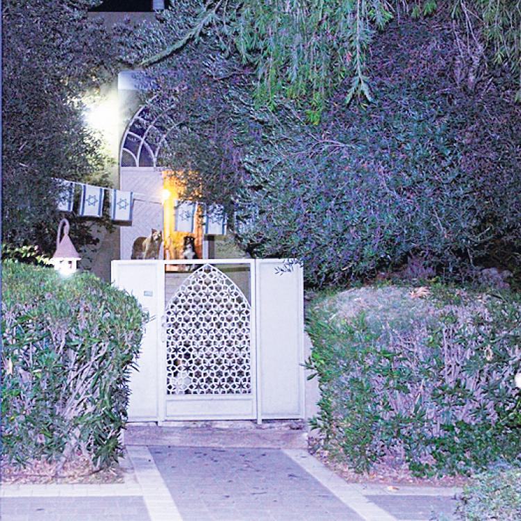 ביתו של מיקי גנור בקיסריה, באותו הרחוב שבו מתגורר נתניהו (צילום: זהר שחר) (צילום: זהר שחר)