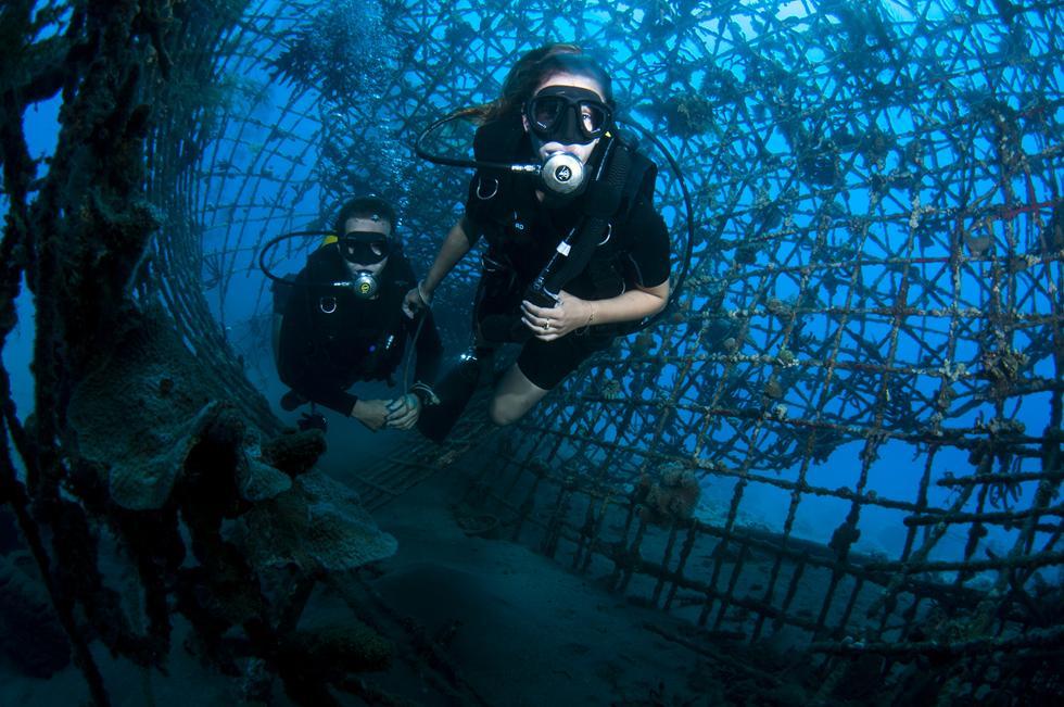 זוג צוללים מסנפיר מסיירים בין הרשתות המונחות על קרקעית הים (צילום:חגי נתיב)