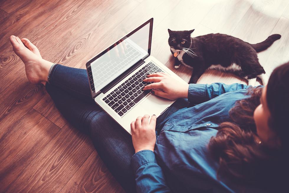 אפשר למצוא בן זוג גם בפורומים של חובבי חתולים (צילום: Shutterstock)