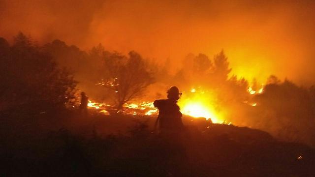 אזור לטרון בלהבות. תחילתו של גל השריפות (צילום: כבאות והצלה ירושלים) (צילום: כבאות והצלה ירושלים)