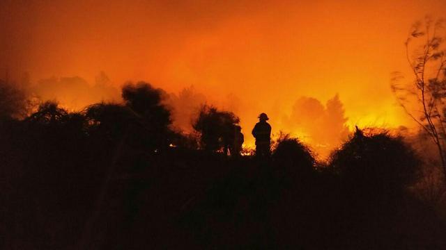כבאים פועלים להשתלטות על האש (צילום: כבאות והצלה ירושלים)