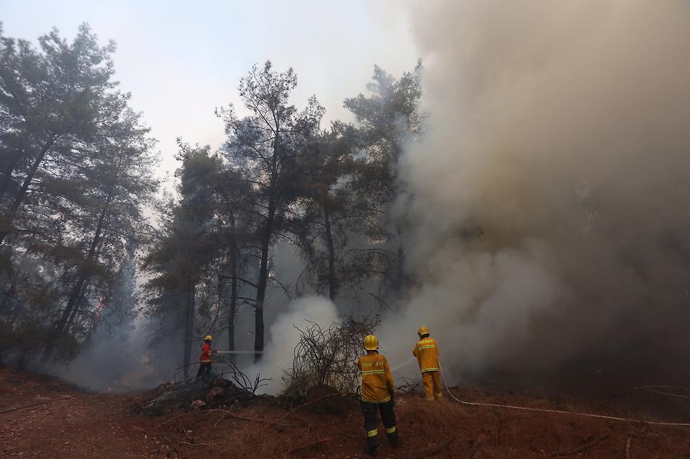 התחלת גל השריפות (צילום: גיל יוחנן) (צילום: גיל יוחנן)