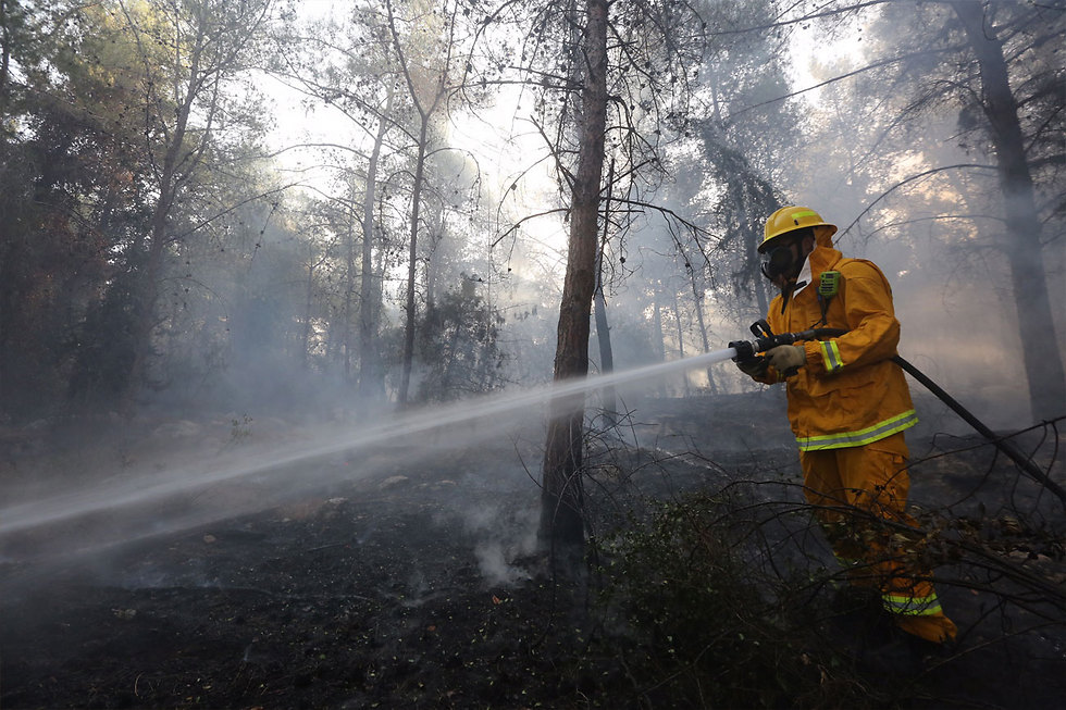 Firefighter putting out blaze in the Neve Shalom area (Photo: Gil Yohanan)