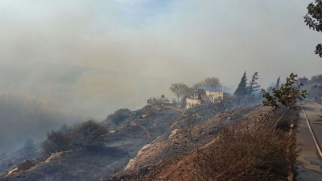 Fire in Nataf in Jerusalem Hills (Photo: Moshe Shiffman) (Photo: Moshe Shiffman)
