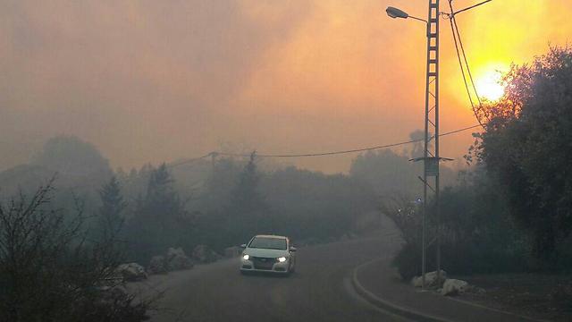 שריפה ביער משגב בצפון (צילום: גדי שבתאי) (צילום: גדי שבתאי)