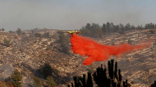 מטוס כיבוי ליד נטף (צילום: רויטרס) (צילום: רויטרס)