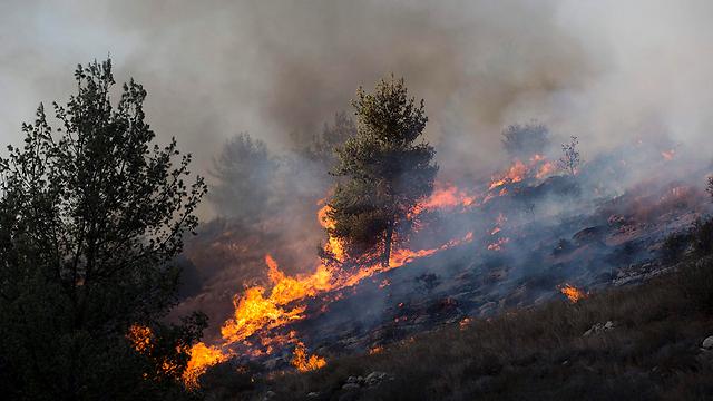 השריפה ליד נטף (צילום: EPA) (צילום: EPA)