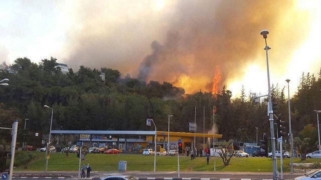 """שריפת הענק ליד תחנת הדלק ברוממה החדשה בחיפה (צילום: דוברות כב""""ה) (צילום: דוברות כב"""