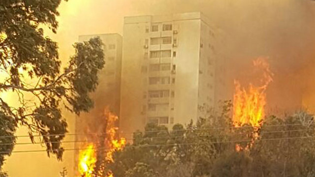 Haifa fire (Photo: Aviv)