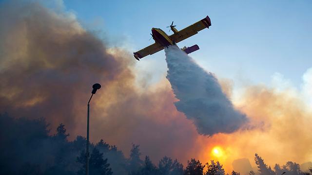 השריפה בחיפה ב-2016 (צילום: AP) (צילום: AP)