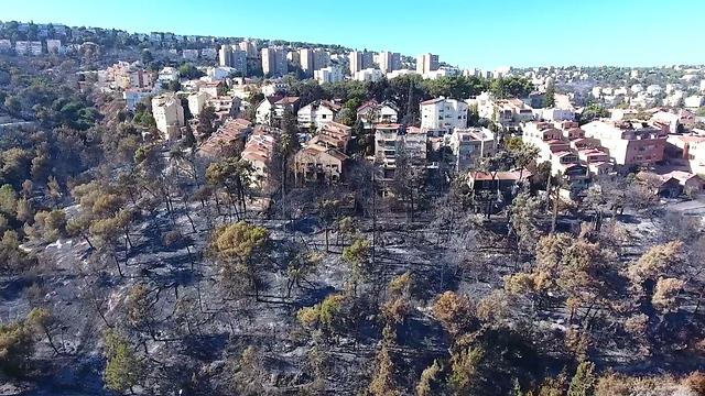 Drone footage of damage in Haifa (Photo: Ilan Barsheshet) (Photo: Ilan Barsheshet)