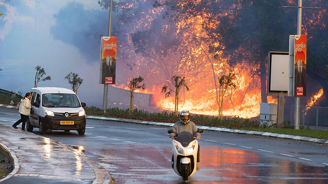 Fire rages in Haifa (Photo: AFP) (Photo: AFP)
