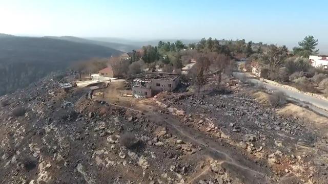 נזקי השריפות בנטף שבאזור ירושלים (צילום: אלי סגל) (צילום: אלי סגל)