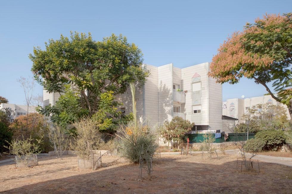 להבדיל: חריש הוותיקה. יש חורשה גדולה ויפה, והחצרות הפנימיות של הבתים מקושרות היטב לרחוב. מצד שני, ההזנחה זועקת  (צילום: עמרי טלמור)