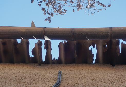 וכך נראה גג אסבסט אחרי השריפה. למה בכלל יש גגות אסבסט עדיין? (צילום: גיא שחר)