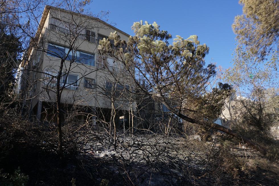 בתים ברחוב איינשטיין היו בקו האש. יש לחייב התקנת תריסים חסיני אש, שניתנים לפתיחה ולסגירה גם בפיקוד מרחוק  (צילום: גיא שחר)