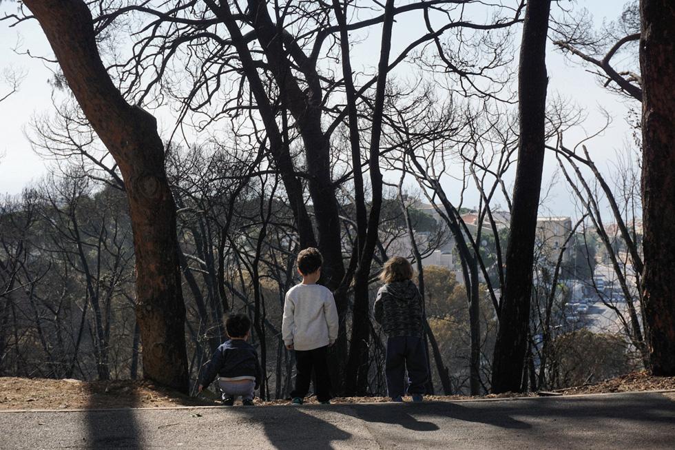ילדי גן מסיירים ברחוב אידר לצפות בנזקי השריפה. אנו נמצאים בתקופות יובש ארוכות - יש להמטיר חומרים מעכבי בעירה מראש, ולא לחכות לאסון  (צילום: גיא שחר)