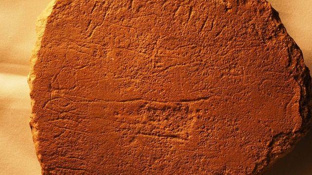 אבן שנמצאה בסיני ועליה עברית עתיקה (צילום: דאגלס פטרוביץ')