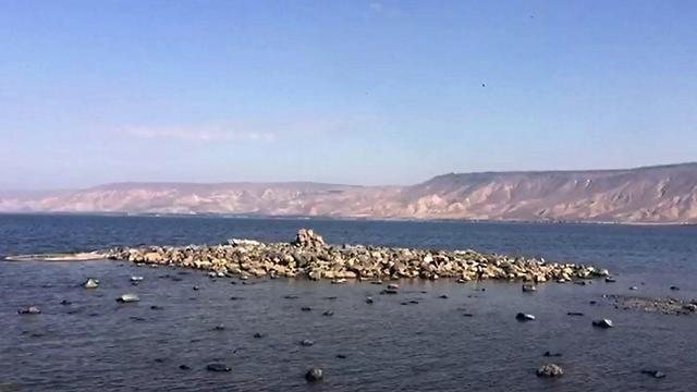 אי חדש שנחשף בכנרת בעקבות ירידת המפלס (צילום: יוני דותן, רשות הכנרת) (צילום: יוני דותן, רשות הכנרת)