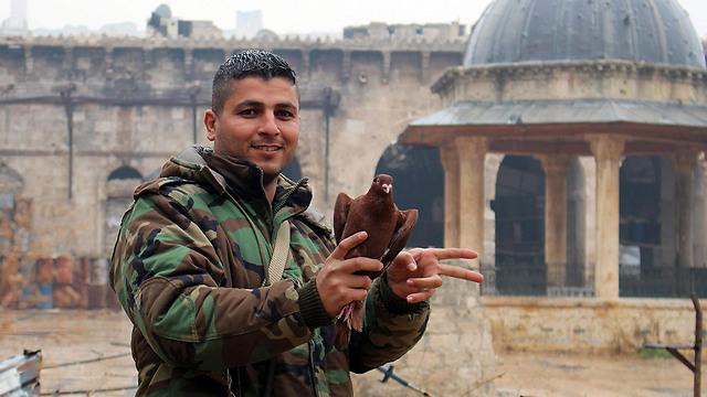 יונה ונער. חייל סורי במזרח חלב (צילום: EPA)