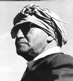 Ben-Gurion in the desert