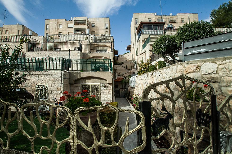 ירושלים  (צילום: דניאל אליאור) (צילום: דניאל אליאור)