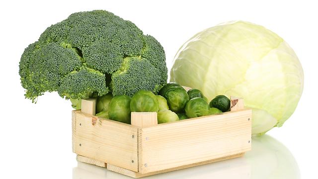 3 מרכיבים תזונתיים שמסייעים ליכולת הקוגניטיבית שלנו 495282901001495640360no