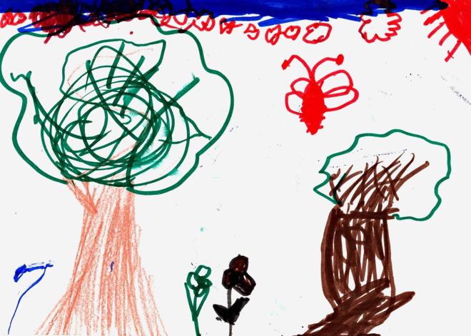 הציור של תמי: עץ שמתחיל לצמוח בכיוון אחד וממשיך לכיוון אחר לגמרי