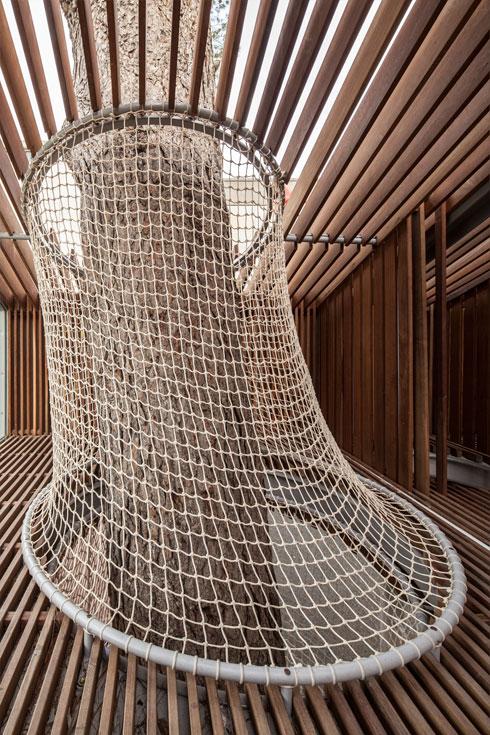 מוטות עץ אורן נבנים סביב המבקרים (צילום: עמית גרון)