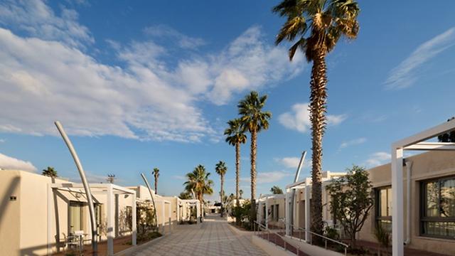 בתוכנית: עוד מאות חדרי אירוח בירוחם. מלון אירוס המדבר  (צילום: אסף פינצ'וק) (צילום: אסף פינצ'וק)