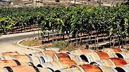 Israeli wine exports to China skyrocket
