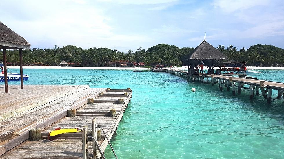 המפגש הראשון עם האי. בלתי נשכח (צילום: עמית קוטלר) (צילום: עמית קוטלר)