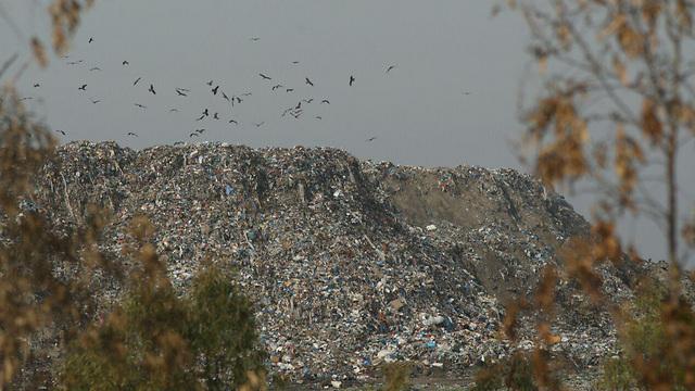A landfill site in the Gaza Strip (Photo: Roee Idan)  (Photo: Roee Idan)