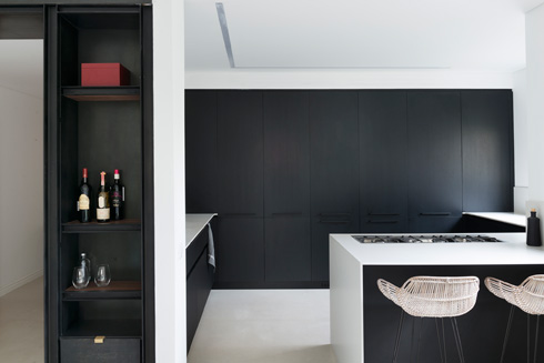 בקיר ארונות המטבח מוסווית דלת שמובילה למרפסת שירות (צילום: גדעון לוין)