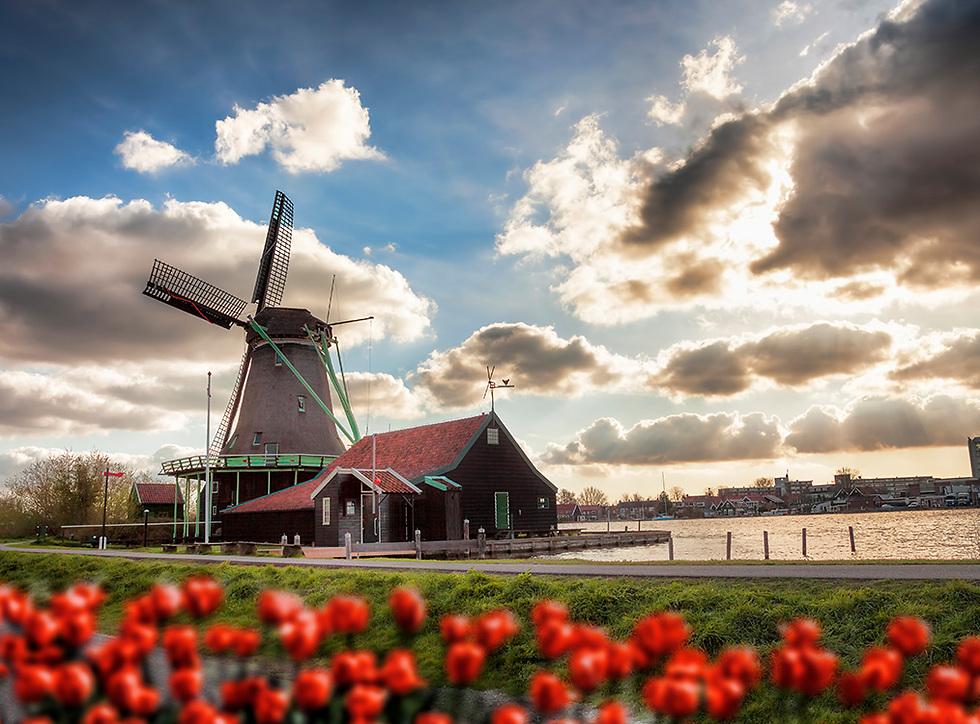 חוזרת ובגדול: הולנד ואמסטרדם בפרט (צילום: istock)