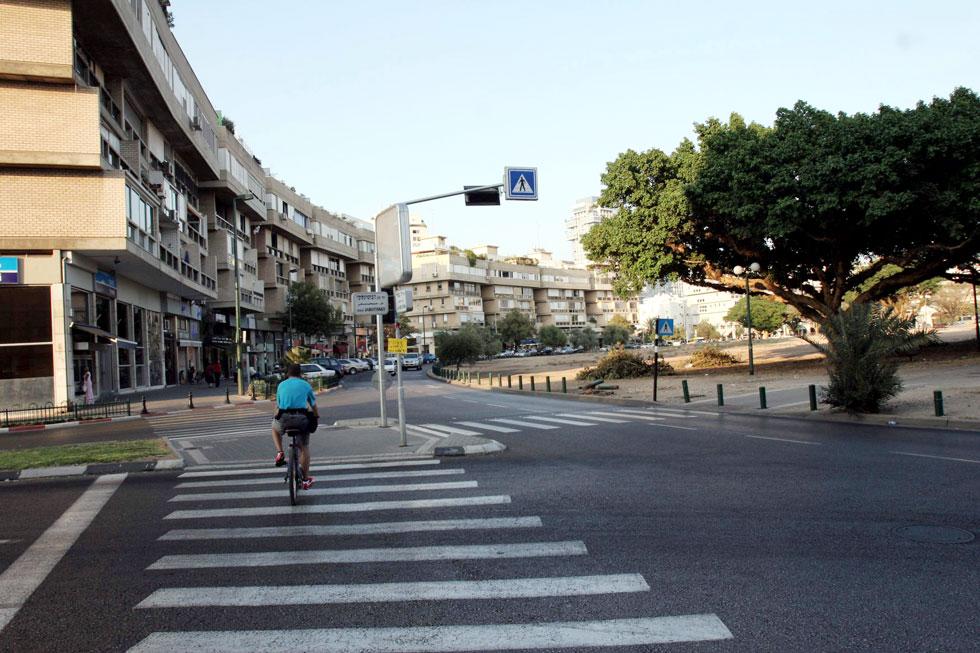 הכיכר היא היום אחד השטחים הפתוחים והירוקים הבודדים בצפון תל אביב. עצי השקמה הוותיקים מציעים בה צל ועל גזעיהם טפסו דורות של ילדים (צילום: יריב כץ)