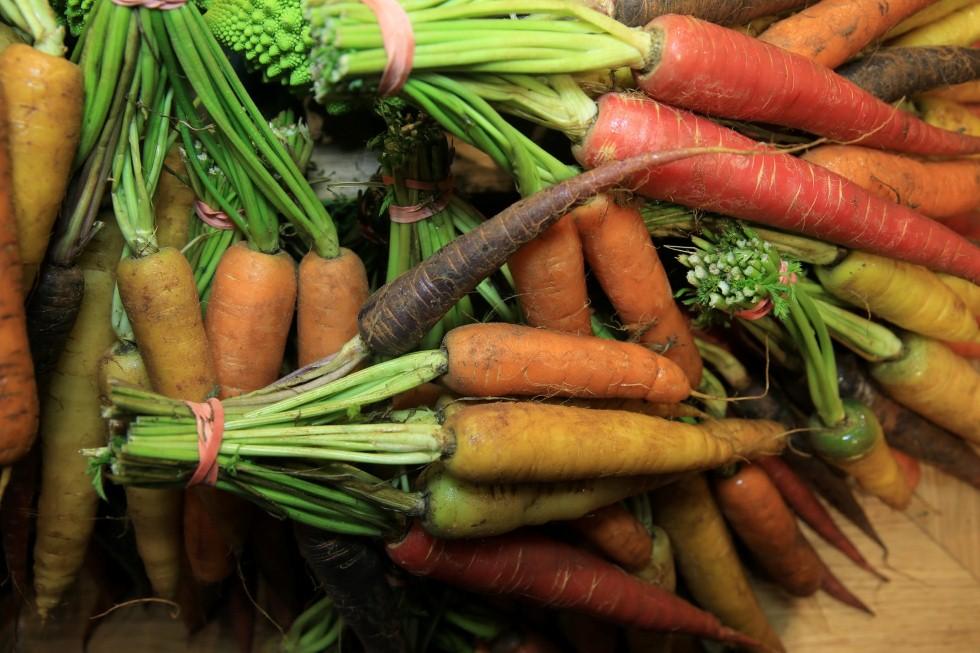 לקנות ישר מהחקלאי - משק זינגר (צילום: ירון ברנר)