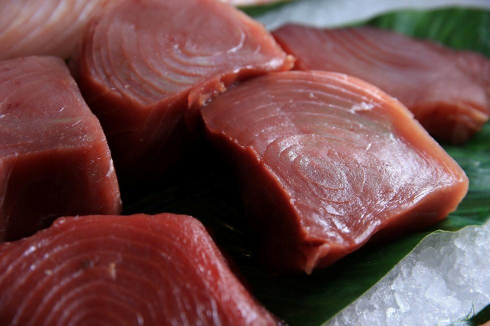 דגים טריים מהפישופ - שרונה מרקט (צילום: ירון ברנר)