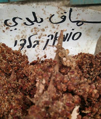 בלאדי. שוק עכו (צילום: יהודה נהר)