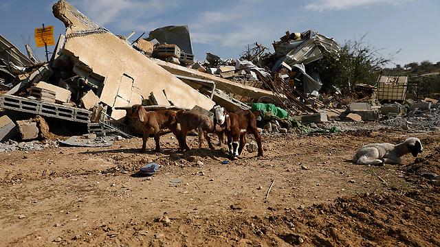 A demolished Bedouin village (Photo: AP)