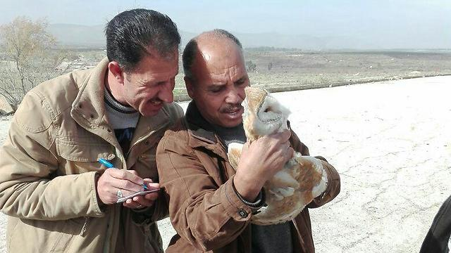 Yussuf Quasem, member of the Owl Project in Jordan, taking notes of the owl prior to its release (photo: Acpd)