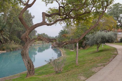 הרוצה לבקר בנחל ישלם 700 שקל ללילה וישכור צימר (צילום: עמרי טלמור)