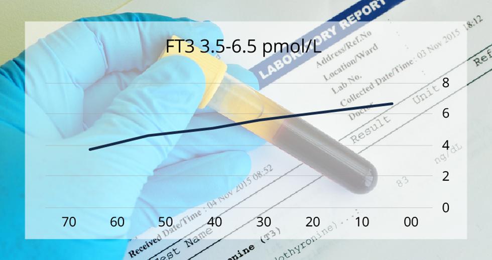 הירידה ההדרגתית בהפרשת ה-T3 ככל שאנו מתבגרים ()