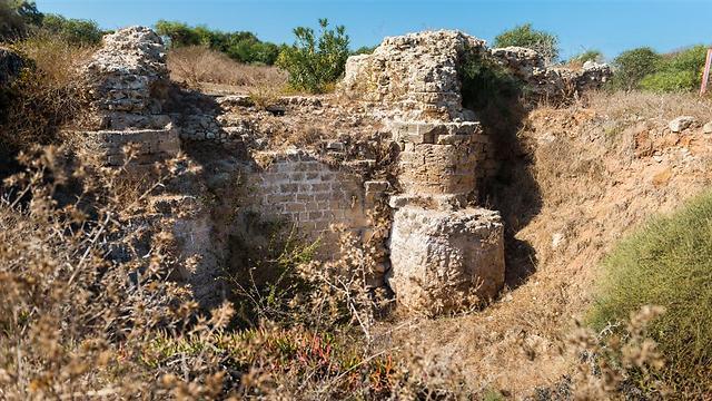 מתחם אפולוניה (צילום נטלי קדוש)