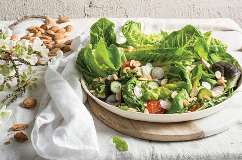 אכילת חופן שקדים לא קלויים ביום עוזרת לצמצם את כמות השומן הבטני ואת היקף המותניים (צילום: בן יוסטר, סגנון: דיאנה לינדר)